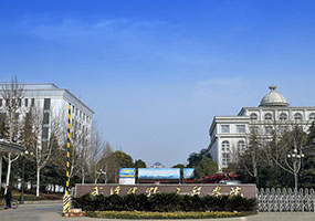 Wuhan Bioengineering Institute